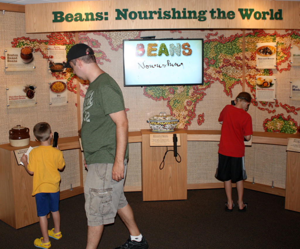 Beans around the world
